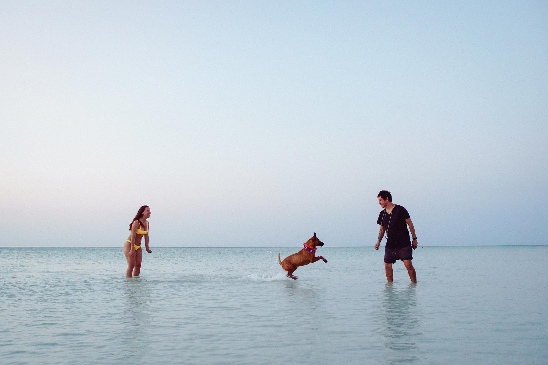 holbox island couple dog