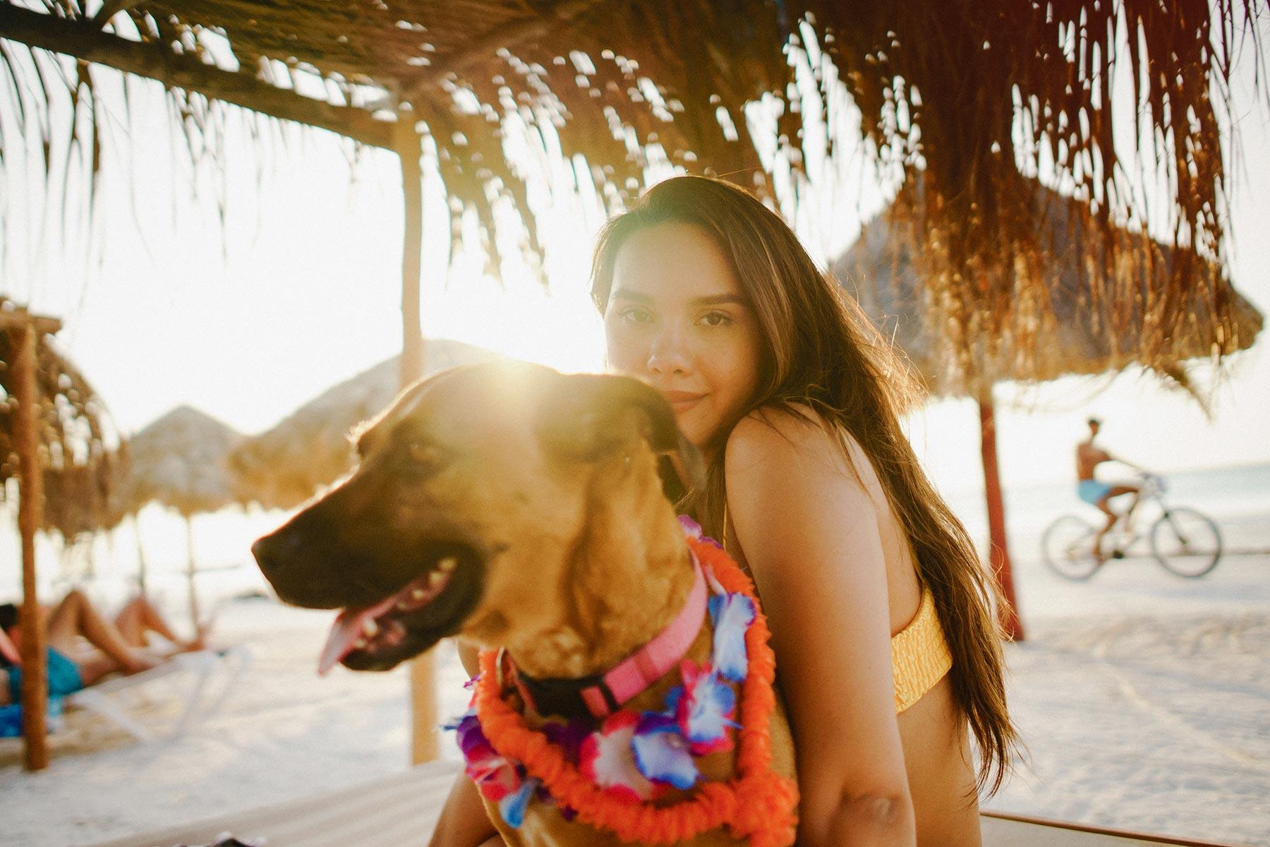 holbox island dog